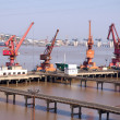 Quay cranes — Stock Photo