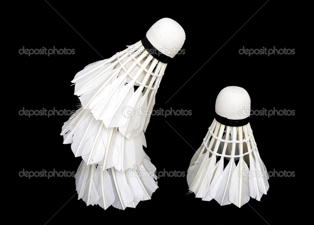 Badminton  Stock Photo #9120840
