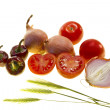 Tomatoes and Onions — Stock Photo