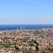 Spectacular panoramic view of the city of Barcelona — Stock Photo #10197779