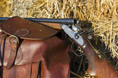 Fusil de chasse luxe antique, closeup — Photo