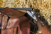Ancient luxury shotgun, closeup — Stock Photo