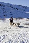 Pirena 2012, etapa 4, baqueira beret. monika frauchiger — Foto Stock