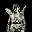 Statue of angel — Stock Photo #9076132