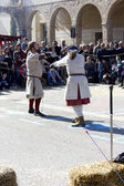 Medieval Fair, fight with swords of exhibition — Photo