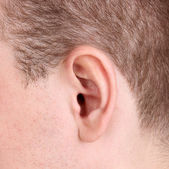 Human ear close-up isolated on white — Stock Photo