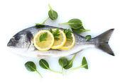 レモンとパセリを白で隔離される新鮮な魚 — ストック写真