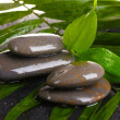 Spa stones with water drops on palm leaf on black background — Stock Photo