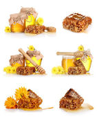 A collage of some compositions jars of honey and the honeycomb isolated on white — Stock Photo