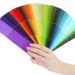 Hand holding bright palette of colors isolated on white - Stock Photo