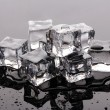 Melting ice cubes on grey background — Stock Photo