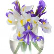 Beautiful bright irises in vase isolated on white - Stock Photo