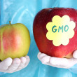 A scientist holds a genetically modified apple — Stockfoto
