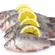 Fresh fishes with lemon isolated on white — Стоковая фотография
