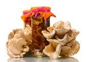 Deliciosos cogumelos marinados no vidro frascos, cogumelo-ostra crua isolado no branco — Foto Stock