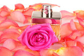 Perfume in a beautiful bottle, petals and pink rose closeup — Stock Photo