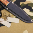 Army badges and knife on camouflage background — Stock Photo #10263836
