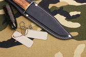 Army badges and knife on camouflage background — Stock Photo
