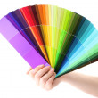hand holding bright palette of colors isolated on white — Stock Photo