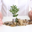 Woman hands with coins and plant — Stock Photo