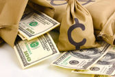 Bags with money close-up isolated on white — Stock Photo