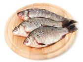 čerstvé ryby na dřevěné prkénko, izolované na bílém — Stock fotografie