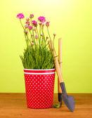 粉色的花在绿色背景上的木桌上的文书用锅 — 图库照片