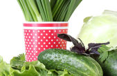Composition of various herbs on a white plate and a red cup with white polka dots isolated on white close-up — Stock Photo