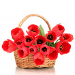 Beautiful tulips in basket isolated on white — Stock Photo #10352586