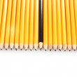 Stock Photo: Lead pencils isolated on white