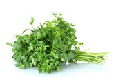 Parsley isolated on white — 图库照片