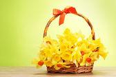 Hermosos narcisos amarillos en la cesta con el arco en la mesa de madera sobre fondo verde — Foto de Stock