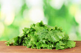 Lettuce on green background — Stock Photo