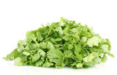 Fresh coriander or cilantro isolated on white — Stock Photo