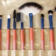 Set of make-up brushes in golden leather case close up — Stock Photo