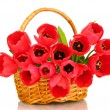 Beautiful tulips in basket isolated on white — Stock Photo #10496911