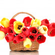 Beautiful tulips in basket isolated on white — Stock Photo #10496912