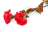 Carnations and St. George ribbon isolated on white — Stock Photo