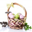 Basket with Easter eggs and pussy-willow twigs isolated on white - Stock Photo