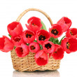 Beautiful tulips in basket isolated on white — Stock Photo