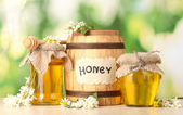 Sweet honey in barrel and jars with acacia flowers on wooden table on green background — Stock Photo