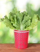 Salad in a red cup with white polka dots on green background — Stock Photo
