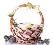 Basket with Easter eggs and pussy-willow twigs isolated on white — Stockfoto