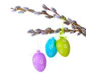 веточки вербы с пасхальными яйцами, изолированные на белом фоне — Стоковое фото