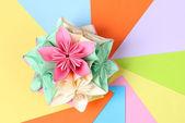 Colorfull origami kusudama na světlé pozadí — Stock fotografie