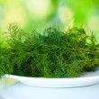 Dill in a white plate on green background — Stock Photo #10598461