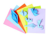 Blue origami on bright paper, isolated on white — Stock Photo