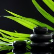 Spa stones and green palm leaf on black background — Stock Photo