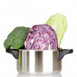 Saucepan with cabbages and broccoli isolated on white — Stock Photo