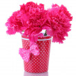 Stock Photo: Bouquet of carnations in vase isolated on white